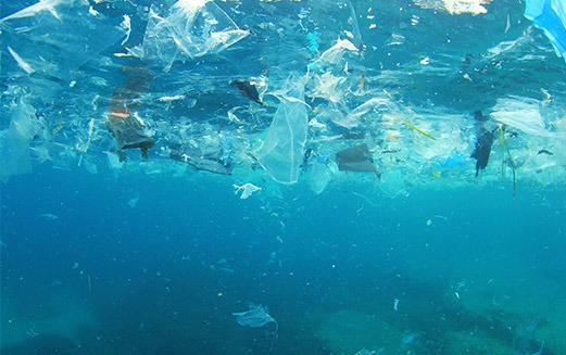 Microplastics: A threat to the future of water?
